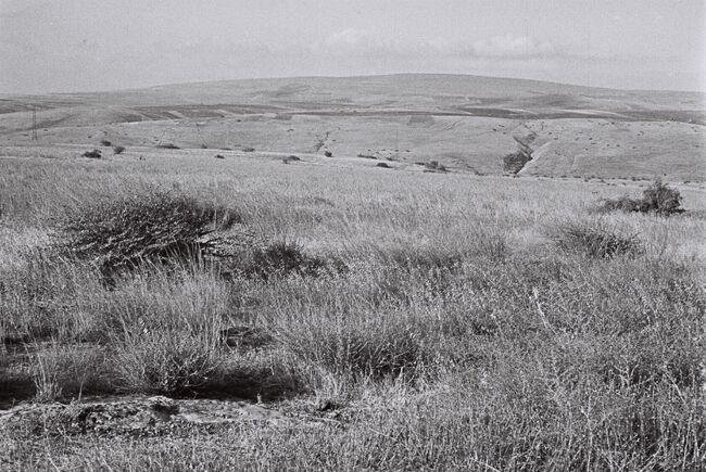 VIEW OF THE LOWER GALILEE NEAR KFAR KISH. נוף בגליל התחתון.D841-001