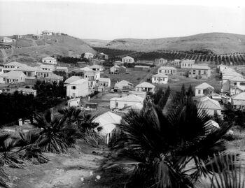 GENERAL VIEW OF BNEI BRAK NORTH OF TEL AVIV. בני ברק.D516-074