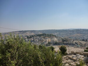 Mount olives view 01