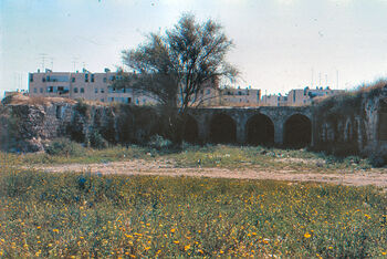 View the old khan of lod