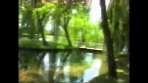 ביקור_במעיינות_של_קליטונו_1997
