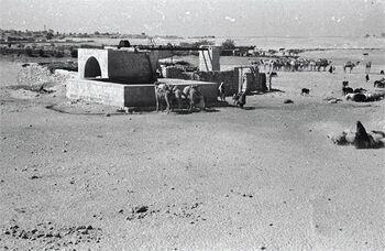 באר שבע - ליד הבאר-JNF025766