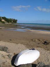 Big Manly Beach, Whangaparaoa