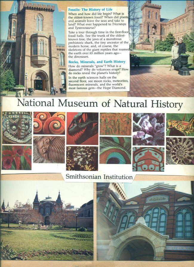 National museon on natural history.jpeg