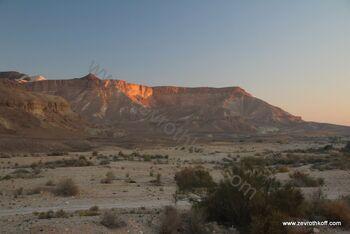הר מרפק מכתש רמון