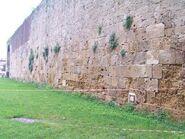 Ebrei-di-toscana 14708613114 o