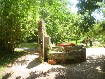 Orto botanico do pisa the well 01