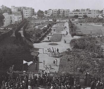 VIEW OF GAN MEIR ON THE DAY OF ITS INAUGURATION IN TEL AVIV. חנוכת גן מאיר בתל אביב.D838-094