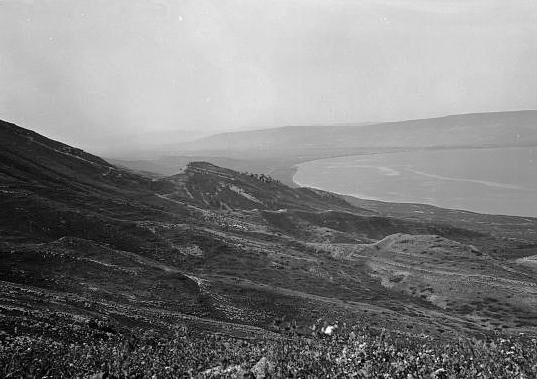 Gamala (Kal'at el-Huson east of the Sea of Galile