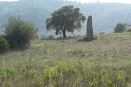 Sardinien menhir vor tortoli