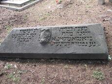 Year 1616 cimiterio pisa ebraico