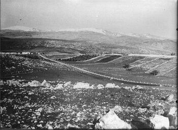 מטולה - מראה המושבה מצד הגבול הסורי-JNF044829