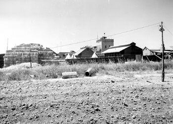 1280px-A GENERAL VIEW OF KIBBUTZ TIRAT ZVI. מראה כללי של קיבוץ טירת צבי בעמק בית שאן.D393-069