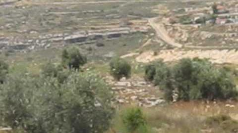 View_of_Kdumim_from_north.wmv