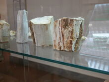 Museo Archeologico Nazionale G A Sanna 03