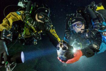 Divers-460x307.jpg
