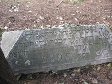 Year 1635 cimiterio pisa ebraico