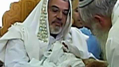 אראל לוי בן יעקב