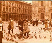 Milano 111