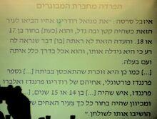 Yocheved Beeri izabel sarsa