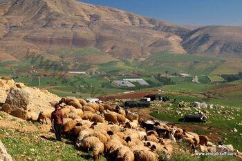 Mount tamun and tirza valley 02