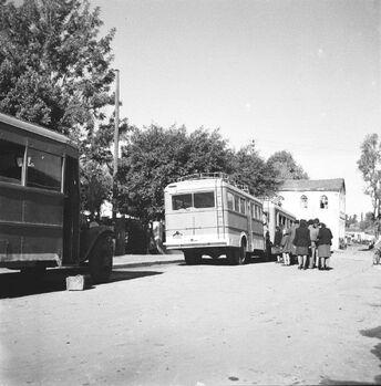 אוטובוסים בתל אביב-ZKlugerPhotos-00132n1-090717068512fe24