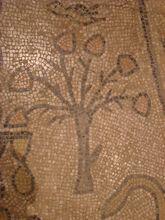 Beth Alfa Synagogue Mosaic 12