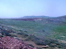 ELON MOREH - Shechem Yitzhak Skali farm
