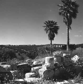 כפר נחום - עתיקות-JNF019214