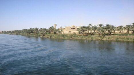 הנילוס 45