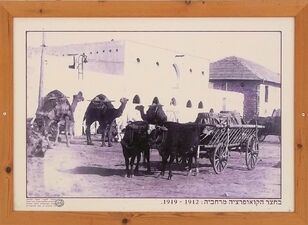 Merchavia 1912