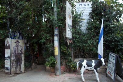 Bat Shlomo enter to house