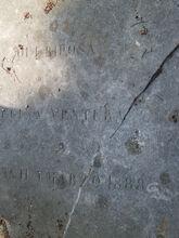 Regina ventura 1888