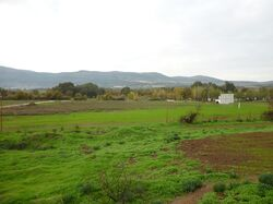 Old site moshav Nechalim a galil 2