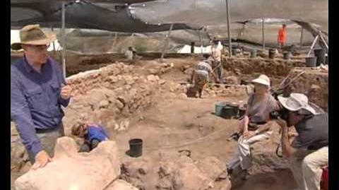 1חשיפת מזבח פלישתי נדיר בחפירות בעיר הקדומה גת