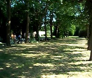 Ferrara cimiterio