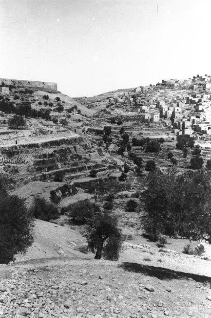 VIEW OF SILWAN VILLAGE IN THE KIDRON VALLEY IN JERUSALEM. צילום כללי של כפר השילוח (סילואן), בנחל קידרון בירושלים.
