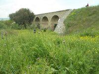 הגשר על נחל תבור