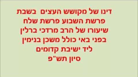הרב_מרדכי_ברלין_דינו_של_מקושש_העצים_בשבת