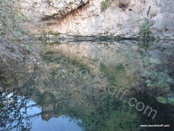 מעיין נוסף בנחל נטוף1