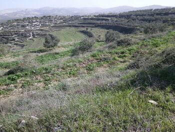 Panorama to eastkdumim top givat rhashi 02