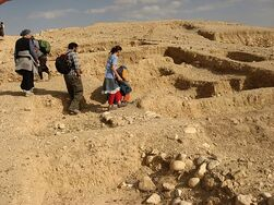 Remains of Hasmonean palaces2