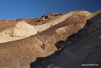 עולים בהר מרפק