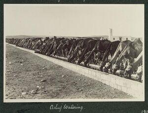 Asluj watering, 1916