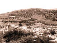 Mount Ebal 789