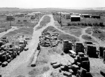 MOSHAV KFAR HAROEH IN THE HEFER VALLEY. מושב כפר הרואה בעמק חפר.D393-102