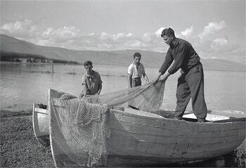 יסוד המעלה - דייג ע י הנוער הגרמני-JNF034542