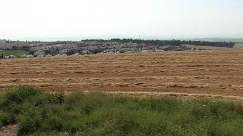 מחנה ישראל (דברת)