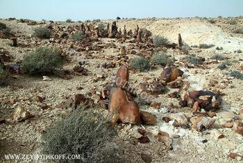 מקדש פליאוליתי בהר כרכום93