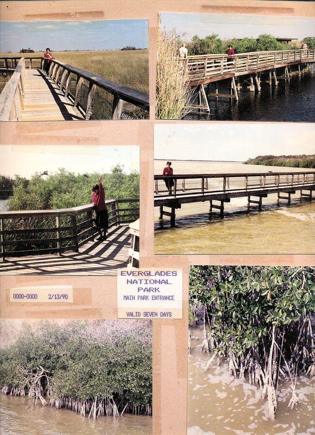 Everglades national park florida 1.jpg